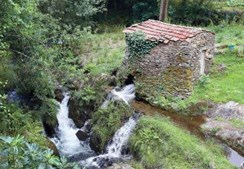 Aldeia de Vilarinho de São Roque situa-se entre o Rio Fílveda e uma serra