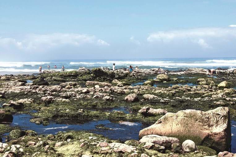 Praias da costa atlântica
