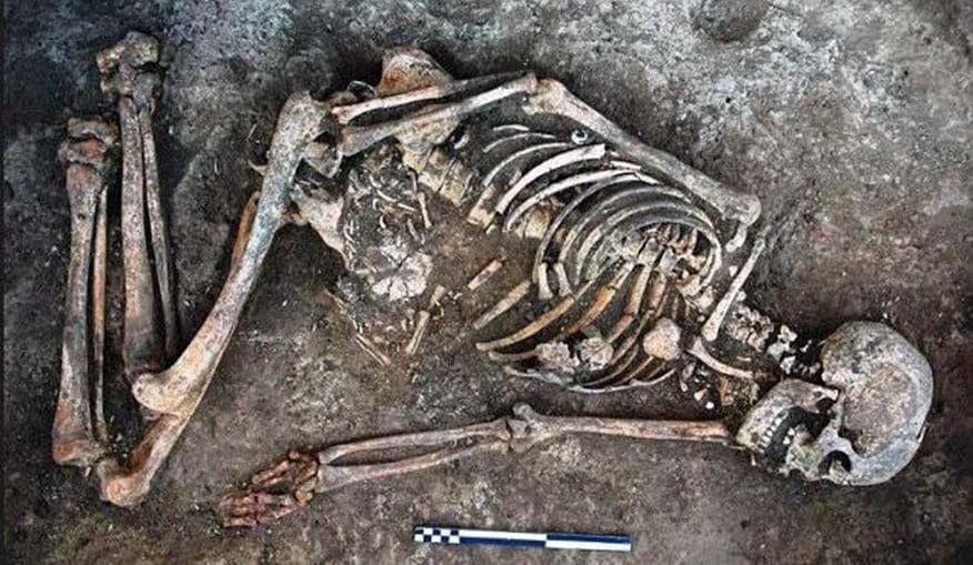 Ossadas foram encontradas nas margens do rio Dniestre, na Ucrânia