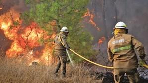 Incendiário ateia sete fogos num dia