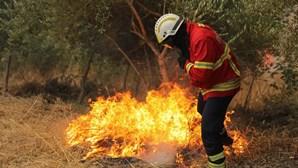 Fogo de Monchique ameaça Silves e vento dificulta combate