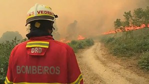 Turistas britânicos aconselhados a evitar zona de fogos no Algarve