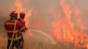 Incendiário libertado por juiz volta a atear chamas