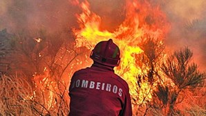Incêndio no Parque Natural da Arrábida em Setúbal já está dominado