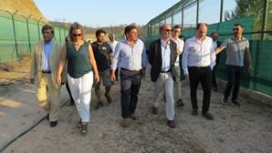 Apoio para 41 pessoas e 29 linces no Algarve