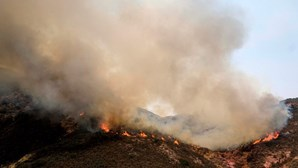 Fumo dos incêndios da costa oeste dos Estados Unidos já chega à Europa