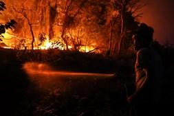 Populares juntam-se a bombeiros e militares no combate ao fogo de Monchique