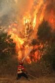 Fogo em Monchique não dá tréguas a populares e bombeiros