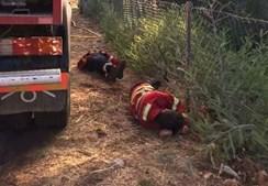Imagens mostram bombeiros a dormir no mato fruto de excesso de cansaço