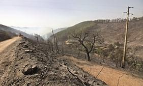 Local onde começou o fogo, na zona das Taipas, na serra de Monchique