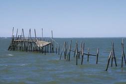 O cais palafítico da carrasqueira conta histórias de quem faz da relação com o mar a sua vida