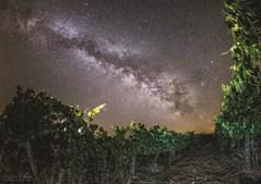 A reserva dark sky alqueva permite noites de observação astronómica e outras experiências