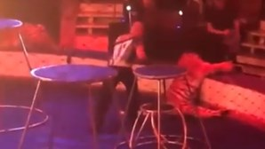 Tigre tem ataque durante espetáculo e colapsa junto ao público