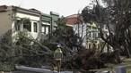 Furacão Leslie faz um morto em Coimbra. Há ainda 28 feridos