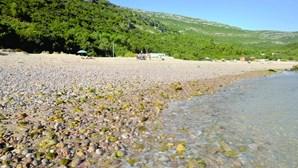 População está contra dragagens no rio Sado