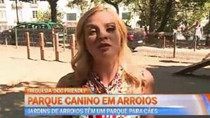 Parque Canino em Arroios