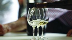 Governo reforça para 18 milhões de euros apoios à crise no setor dos vinhos