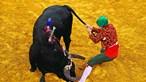 Autarquias gastam cinco milhões de euros em touradas