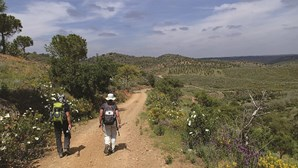Atravessar o Algarve de nascente a poente por serras e trilhos