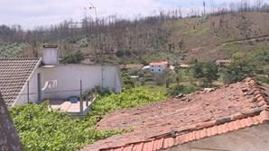Natal retoma normalidade nos concelhos de Pedrógão Grande afetados pelo fogo