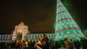 Lisboa, Viseu e Setúbal ganham cor e brilho com luzes de Natal