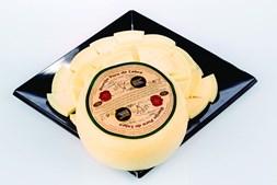 a partir de 208 amostras de queijos, o júri escolheu os vencedores de 21 categorias