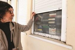 Rosa Martins, de 82 anos, viu a sua habitação ser invadida por uma praga de baratas desde agosto