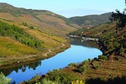 Vista panorâmica do rio Tua. Das suas encostas sai muito do 'ouro' da região