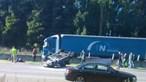 Homem morre em despiste na A1 em Santa Maria da Feira
