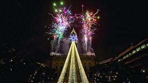 Luzes natalícias do Porto desligadas levam empresa a tribunal