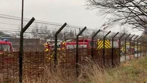Fogo no Jardim Zoológico de Chester matou vários animais