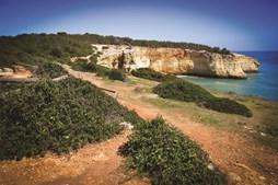 """Proteção de uma zona da costa """"que preserva os traços originais"""" foi um dos argumentos para o parecer desfavorável"""