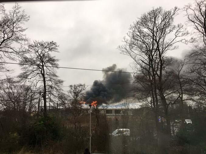 Fogo no zoo de Chester matou vários animais