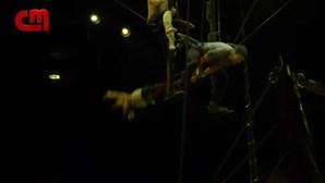 'Bicharada' em Lisboa com o Cirque du Soleil