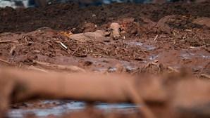Novo balanço aponta para 40 mortos em rutura de barragem no Brasil