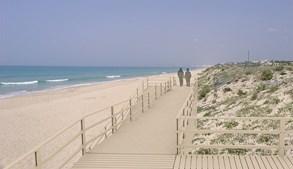 Projeto prevê a criação de um passadiço de acesso à praia do Ancão, em articulação com os apoios de praia existentes