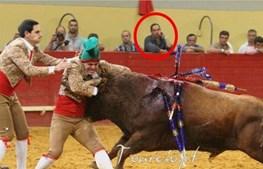 António Peças fotografado em tourada no dia em que recusou voar com o INEM