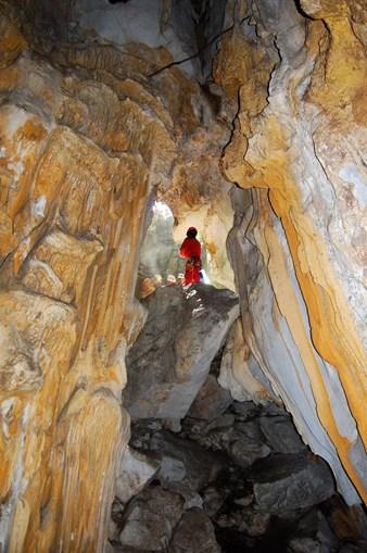 Cientista portuguesa descobre em Timor-Leste nova espécie de animal cavernícola