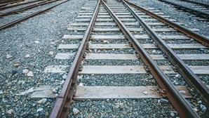 Linha do Norte interrompida devido a atropelamento mortal na zona de Santarém