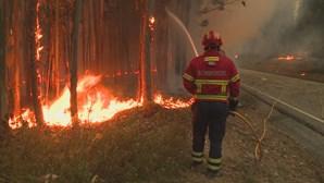 Mais arguidos ouvidos no caso dos incêndios de Pedrógão Grande