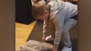 A reação emocionante de um menino autista ao receber um cachorrinho