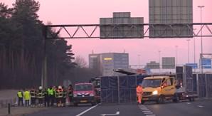 Três jovens portugueses morrem carbonizados em violento despiste na Holanda