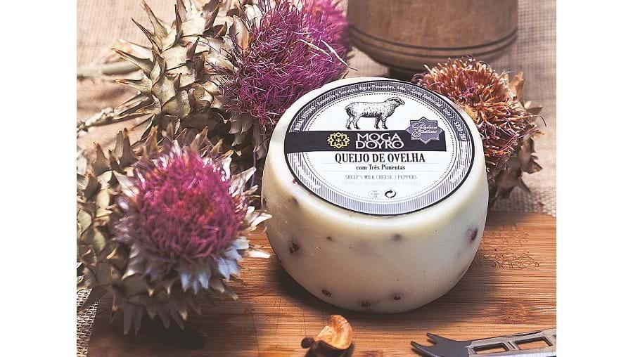 Conheça a mais recente marca de queijos Mogadoyro