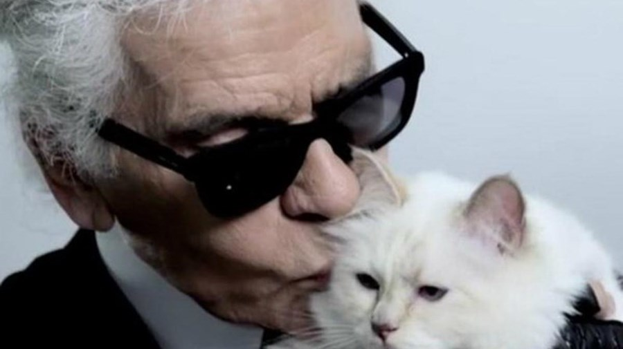 Karl Lagerfeld e Choupette