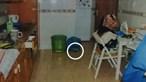 Imagens exclusivas mostram provas recolhidas em casa das gémeas Cupertino