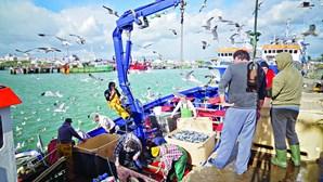 Lotas do Algarve venderam 13 mil toneladas de pescado
