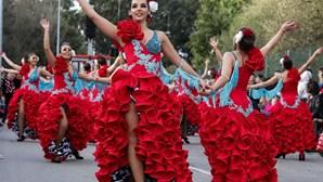 Estarreja, Ovar, Mealhada, Figueira da Foz e Torres Vedras sem corsos de Carnaval em 2021 devido à Covid-19