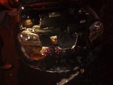 Cinco carros totalmente destruídos após incêndio em Queijas