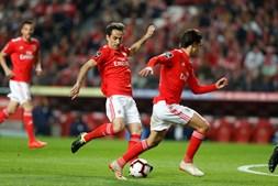 Benfica - Belenenses