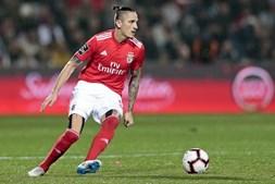 Fejsa em ação num jogo do Benfica